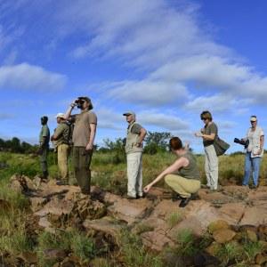 Infinite_Africa_Travel_Mozambique_Machampane_Walking_Safaris_Bush