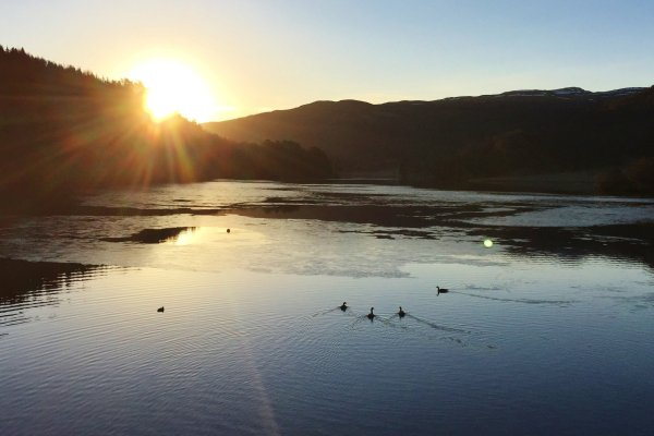 Sunrise over Scottish Highland loch with birds in the water