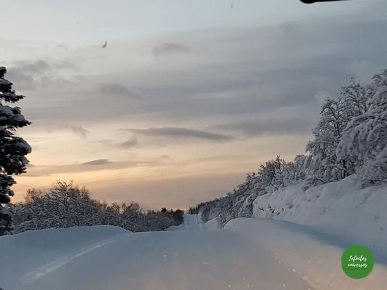 lofoten Laponia Viaje a la Laponia noruega en una semana: visitas, mapa y consejos