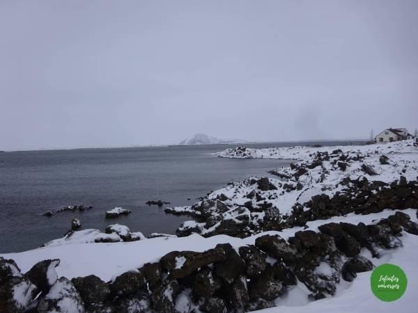 Orilla del lago myvatn