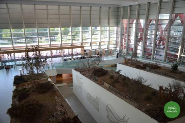 Museo de la Evolución Humana  - Qué ver en Burgos en un día  que hacer en burgos castilla y leon