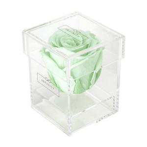Produktbild Cool Mint Single Acryl