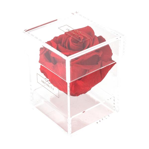 Produktbild Vibrant Red Single Acryl