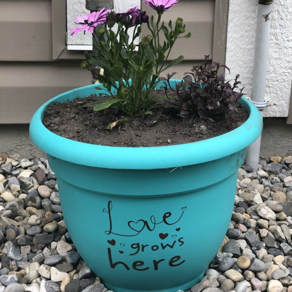 Love Grows Here Planter Pot Vinyl Decal