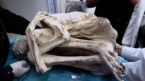 "Three-fingered ""Alien Mummy"" found in Peru!!"