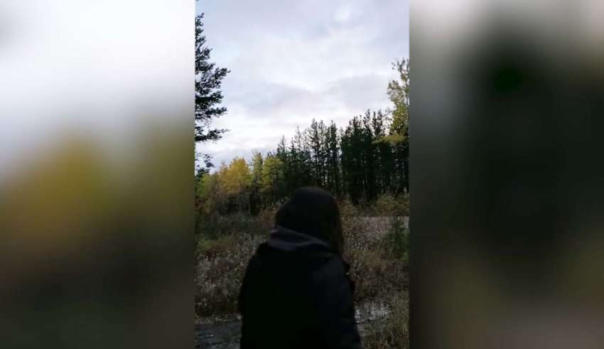 Biologists cannot explain the frightening howls in a Canadian forest