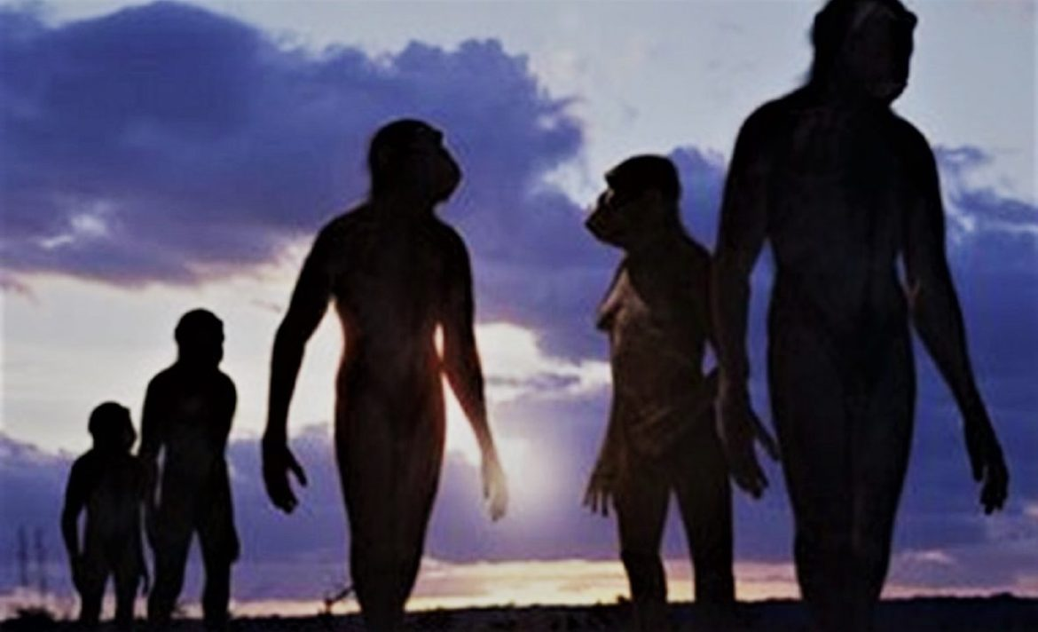 Researchers found Fossils of 7 million years old primates that walked like humans