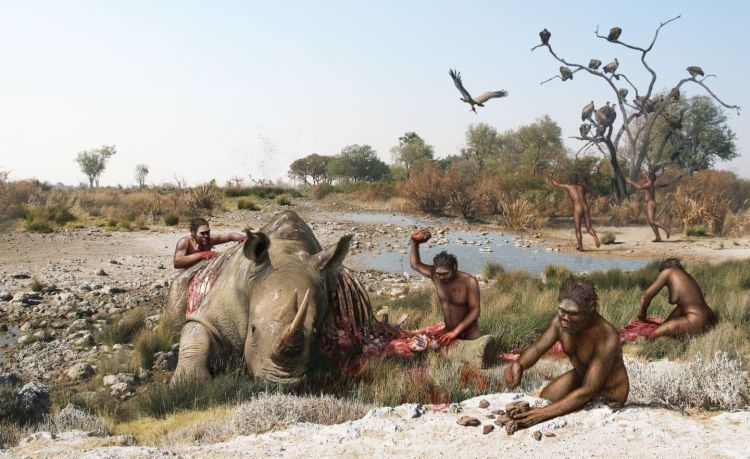 Mystery Of Saint Prest Bones: Were Humans Already Living In Europe 2 Million Years Ago?