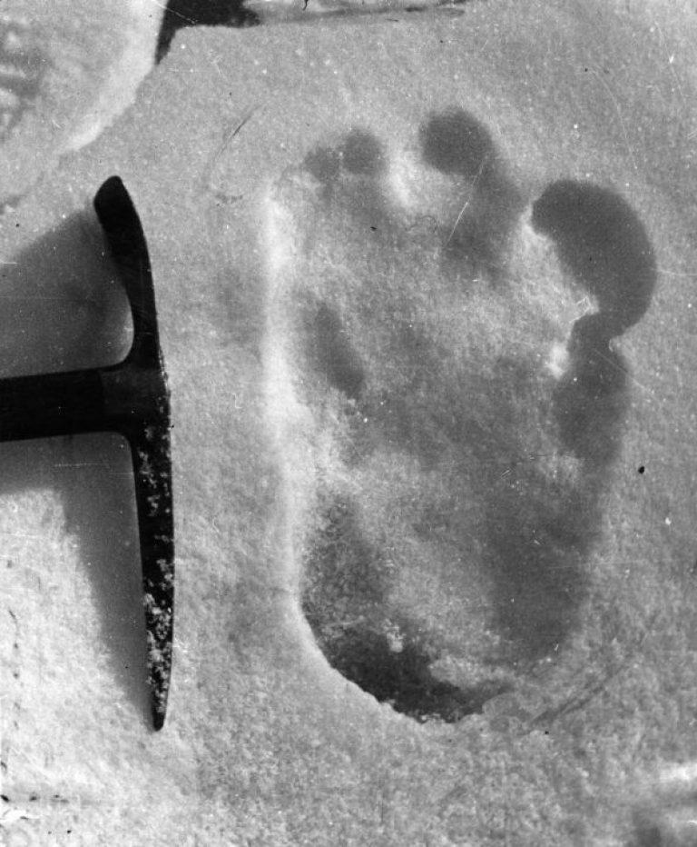 Огромные следы найдены в Гималаях