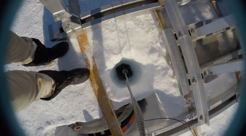 Bizarre Life Forms Discovered Beneath The Hostile Ice Shelves Of Antarctica