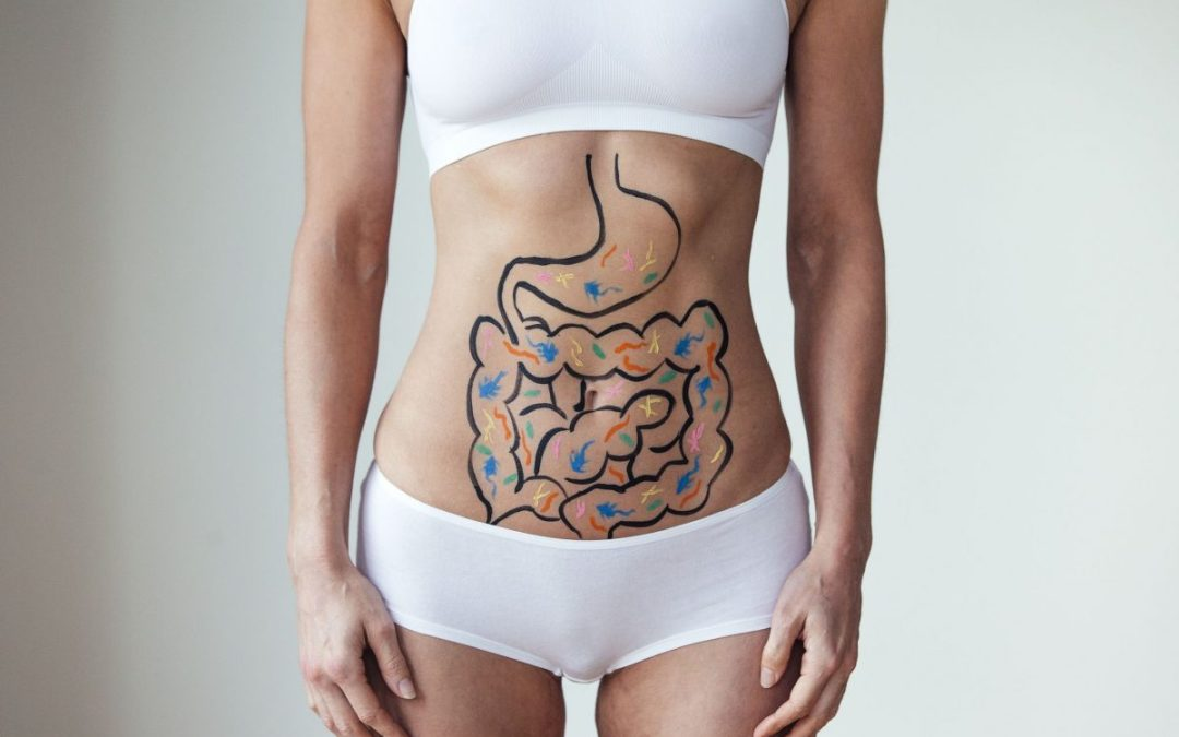 INTESTINAL MUCUS: The Missing LINK for your LEAKY GUT