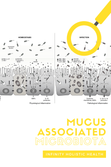 Mucus-Associated Microbiota (Microbes In Your Mucus?)