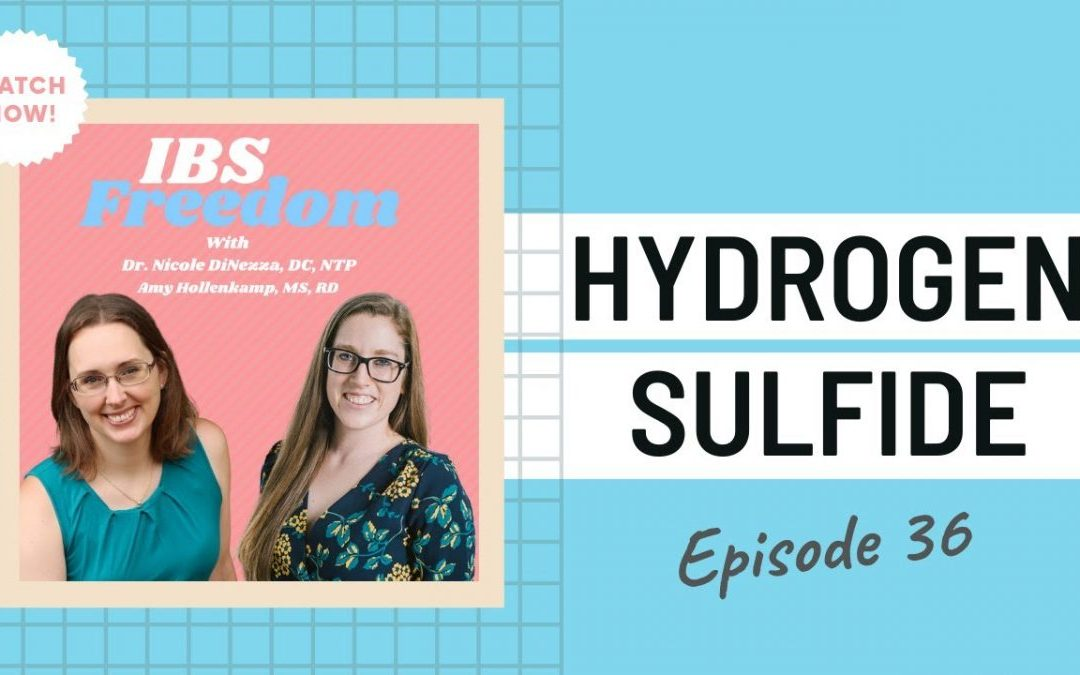 Hydrogen Sulfide from IBS Freedom Podcast #36