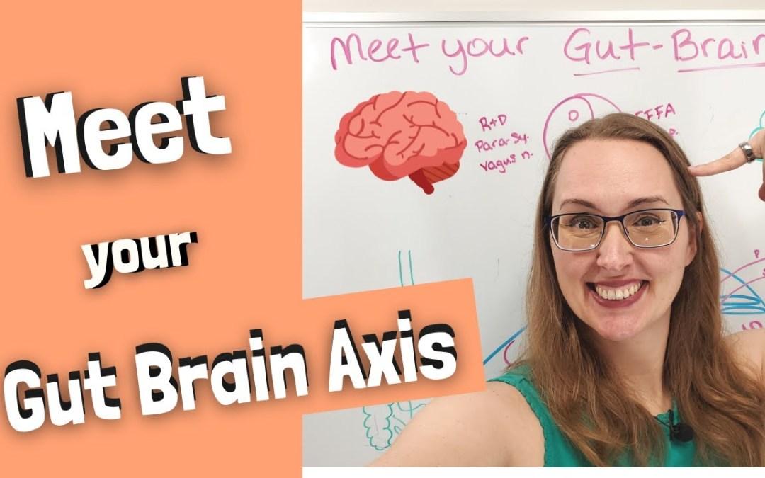 Gut Brain Axis Crash Course