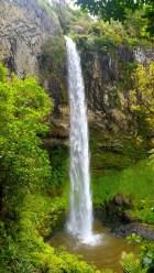 Whangarei Falls2