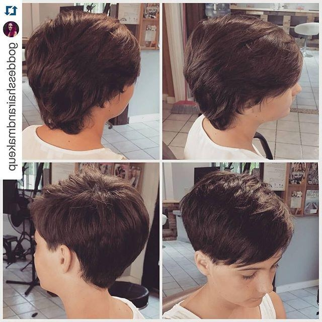 Short Haircuts Front And Back View Hairstyles Ideas