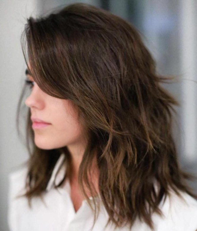 Shoulder Length Haircuts For Frizzy Hair Driveeapusedmotorhomefo
