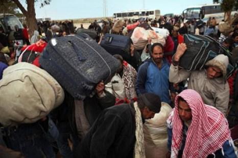 беженцы 2
