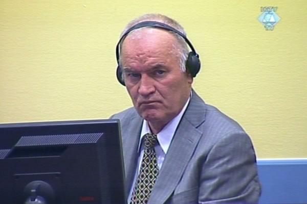 Адвокат Ратко Младича: Боснийские лидеры выступали за джихад против сербов