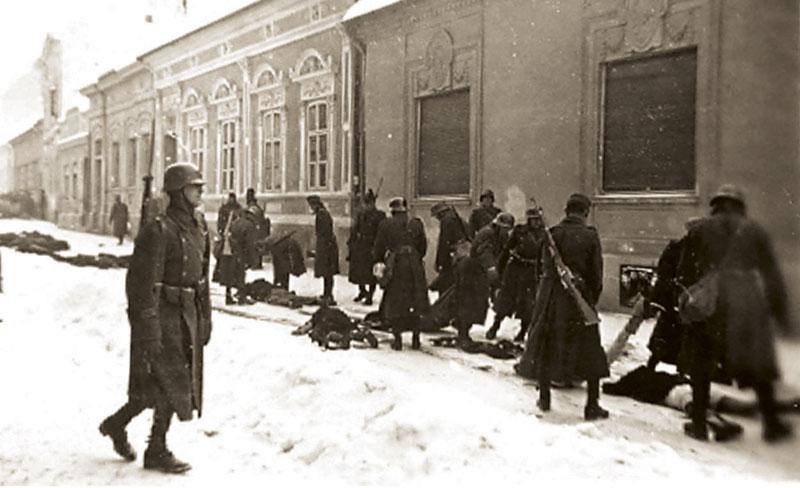Ужасы венгерской облавы в Югославии во время ВОВ
