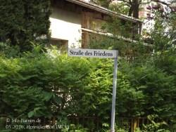 201605-mol-hennickendorf-01