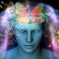 Клетки мозга восстанавливаются! (нейрогенез)