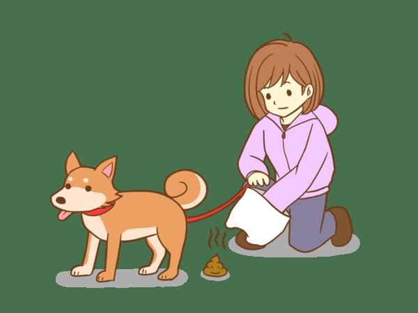 犬のうんち