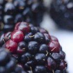 ブラックベリーの食べ方と栄養 どんな果物なの?