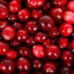 クランベリーの食べ方と栄養・効能 どんな果物?