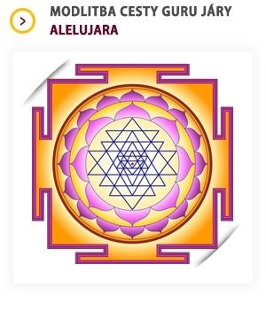 Mandala symbolizující spojení mužského a ženského principu. Zdroj: web CGJ.