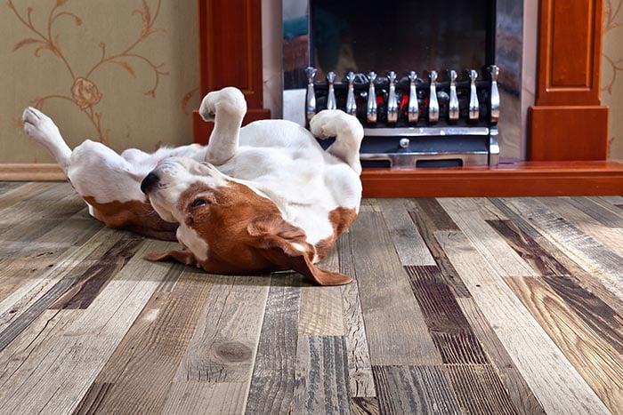 https info floordecorct com blog porcelain wood look tile vs luxury vinyl plank honest comparison
