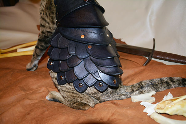 black-leather-cat-armor-schnabuble-5