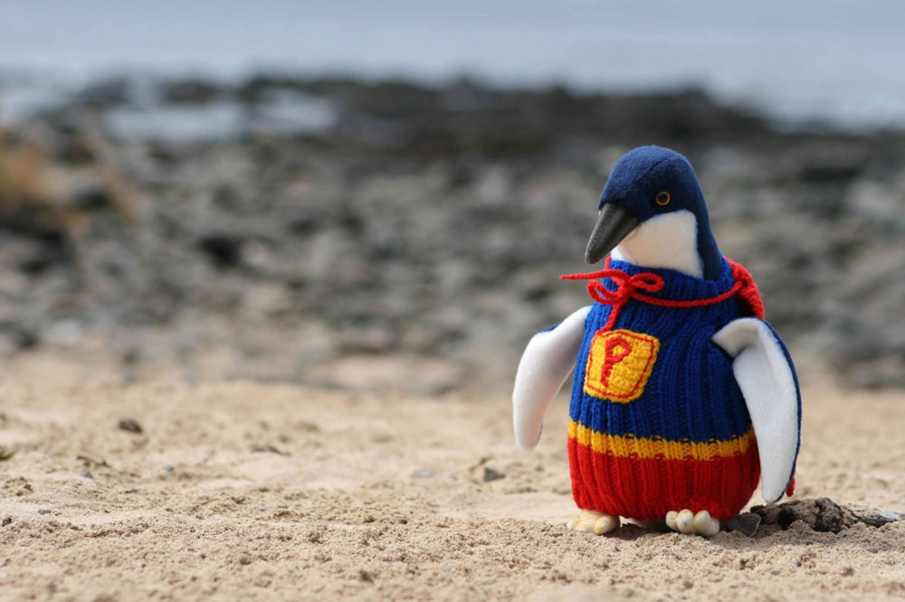adaymag-knit-a-sweater-save-a-penguin-02