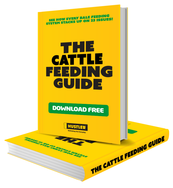cattle-feeding-guide.png