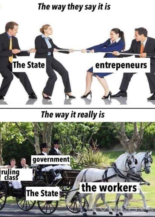 government-vs-entrepreneurs