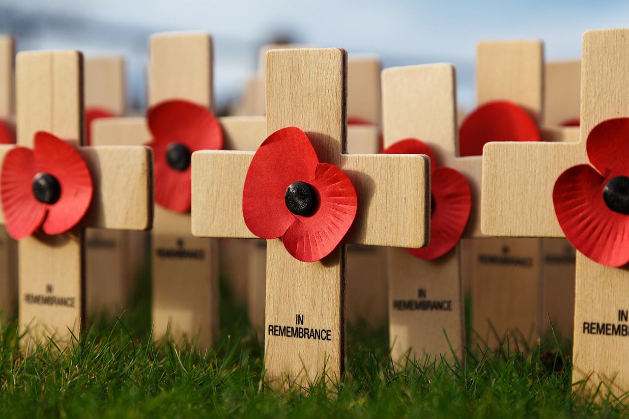 Remembrance Day Activities For Every Grade