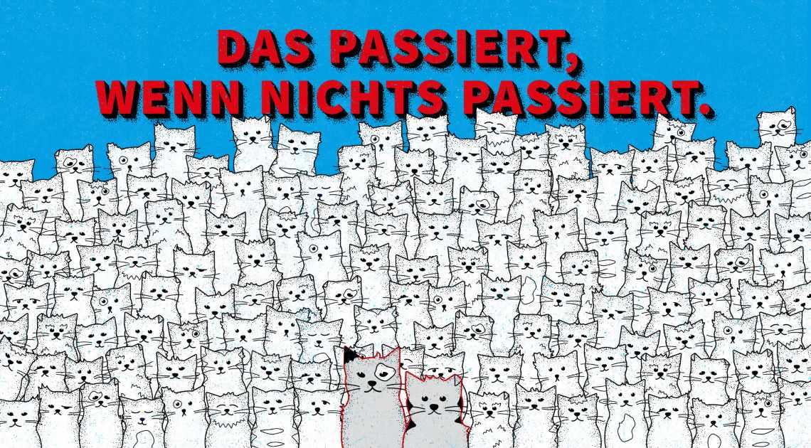 VIER PFOTEN hilft Streunerkatzen in Deutschland.