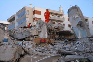 Deprem Sonrası Betonarme Binalarda Hasar Tespiti