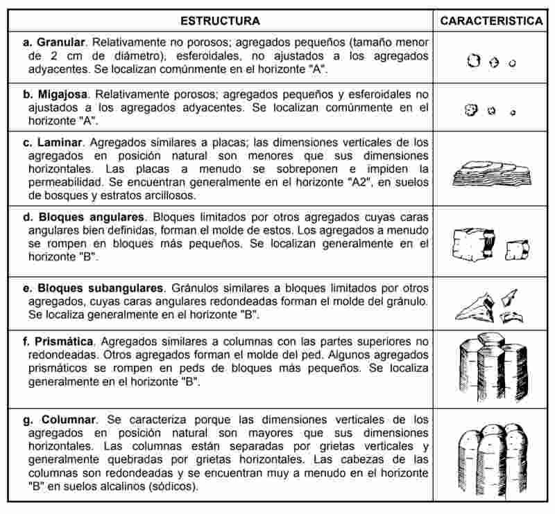 Características de la estructura del suelo