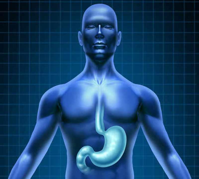 digestion-1