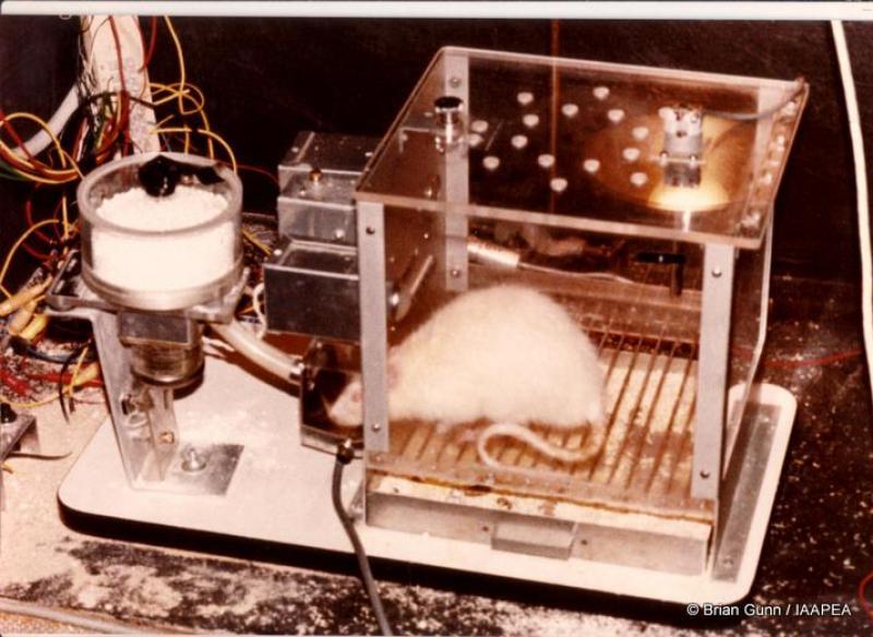 animal-testing-animal-research-shock-skinner-box-picture