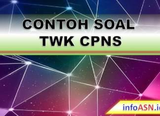 Contoh Soal TWK HOTS CPNS/Kedinasan (Kumpulan Soal CPNS TWK)