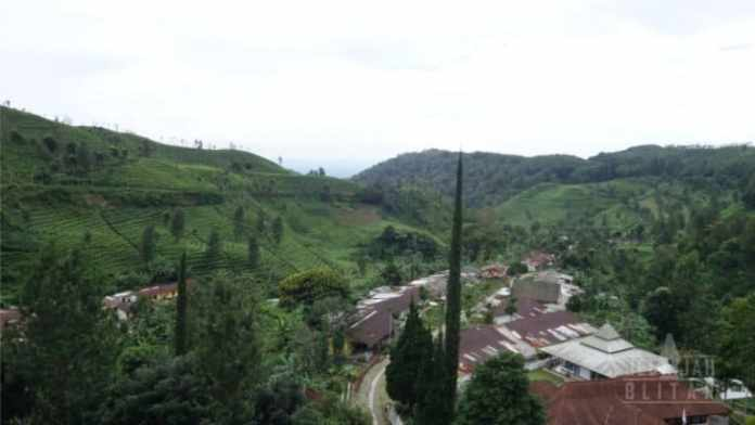 Kawasan Kebun Sirah Kencong