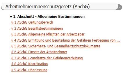 AschG 2013 Evaluierung