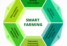 What is smart farming? And how it is helpful to overcome many agrarian challenges