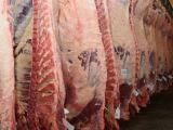 Carne vacuna: Aumentaron las exportaciones y con altos precios, cayó 10% el consumo interno