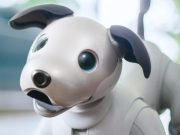 Aibo-hed-796x398