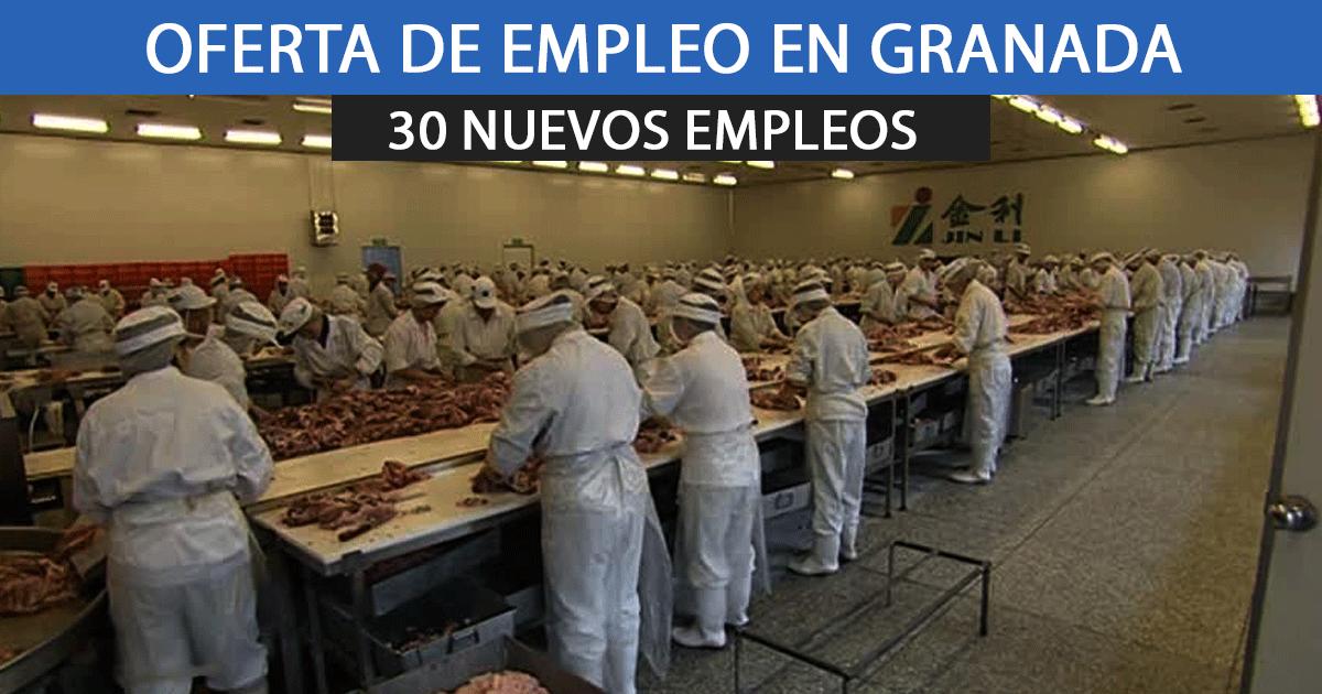 Salen a oferta 30 vacantes de empleo para un matadero en Guadix.