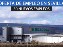 50 ofertas de empleo para Mercadona en Sevilla