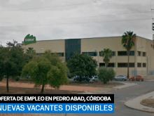 Se necesita Personal parta fábrica Cárnica en Pedro Abad, Córdoba